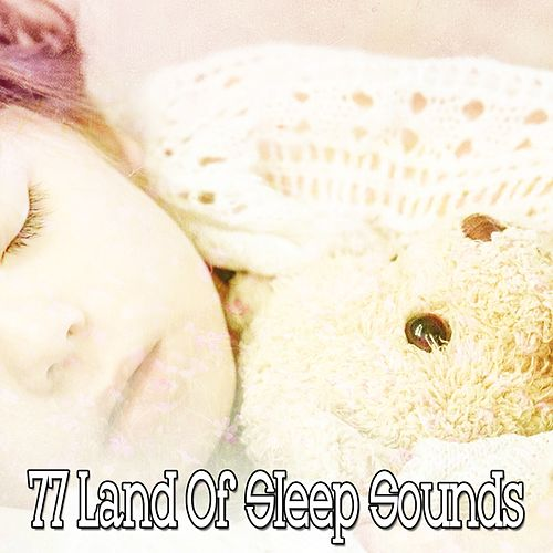 77 Land Of Sleep Sounds de Lullaby Land
