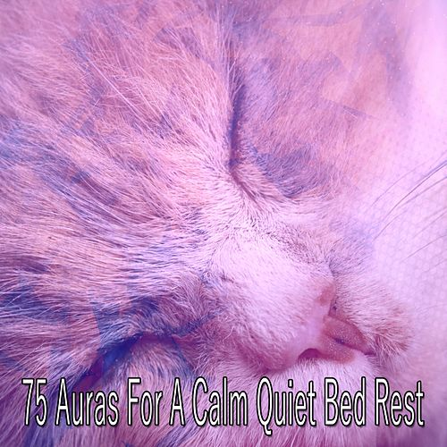 75 Auras For A Calm Quiet Bed Rest de Baby Sleep Sleep