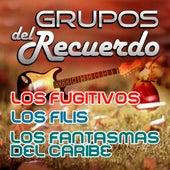 Grupos Del Recuerdo by Various Artists