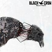 Broken Circuits by Black Crow