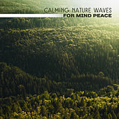 Calming Nature Waves for Mind Peace – Easy Listening, Peaceful Music, Sounds for Relaxation, Inner Calmness by Sounds Of Nature