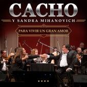 Para Vivir Un Gran Amor (Live In Buenos Aires / 2016) by Cacho Castaña