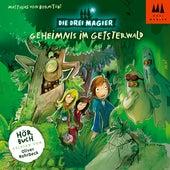 Hörbuch: Geheimnis im Geisterwald (ungekürzt) von Die Drei Magier