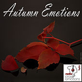 Play Emotions, Vol. 5 (Autumn Emotions Playlist) by Various Artists
