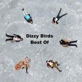 Best Of by Dizzy Birds