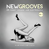 New Grooves, Vol. 1 (25 Funky Lounge & Electronica) by Various Artists