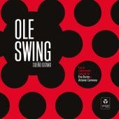 Sueño Gitano de Ole Swing