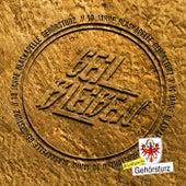 Geil bleiben! by Blaskapelle Gehörsturz