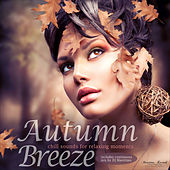 Autumn Time, Vol. 1 - Chill Sounds for Relaxing Moments by Various Artists