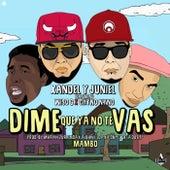 Dime Que Ya No Te Vas by Xandel y Juniel