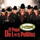 El Papá De Los Pollitos by Los Tucanes de Tijuana