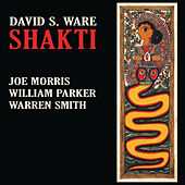 Shakti by Warren Smith