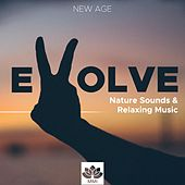 Evolve - Nature Sounds (Thunder, Rain, Ocean Waves) & Relaxing Instrumental Music by Piano Love Songs