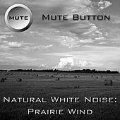 Play & Download Natural White Noise: Prairie Wind by Mute Button | Napster