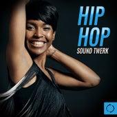Hip Hop Sound Twerk by Various Artists