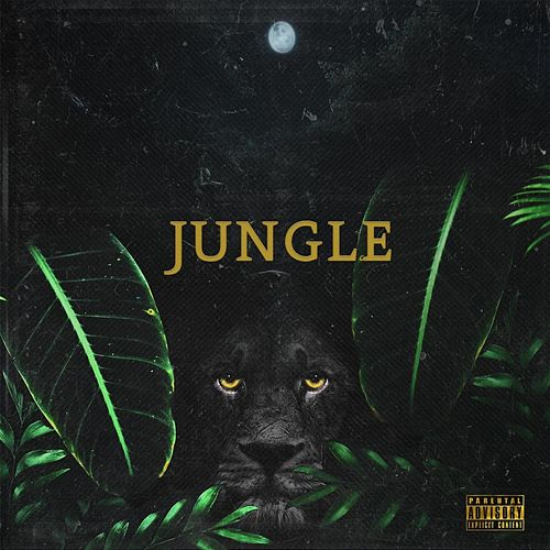 Jungle by Jermin