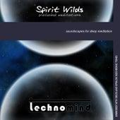 Spirit Wilds: Profound Meditations by Techno Mind