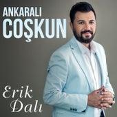 Erik Dalı by Ankaralı Coşkun