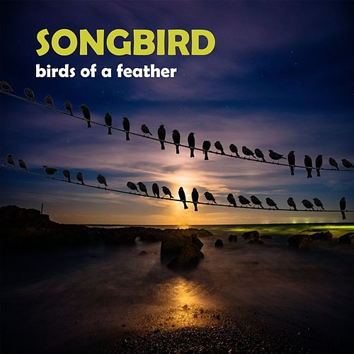 Birds of a feather by Songbird