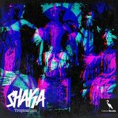 Shaka (Original Afro Mix) by Tropicanism