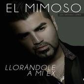 Llorandole A Mi Ex by El Mimoso Luis Antonio López