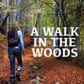 A Walk In The Woods von Various Artists