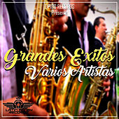 Grandes Éxitos by Various Artists