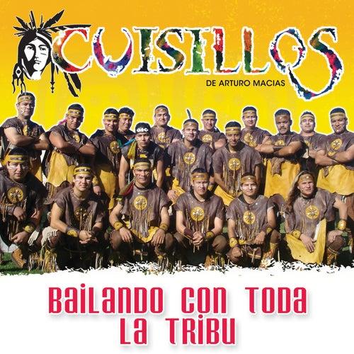 Play & Download Bailando Con Toda La Tribu by Banda Cuisillos | Napster