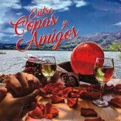 Entre Copas y Amigos by Various Artists