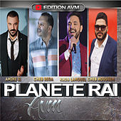 Planete Rai by Various Artists