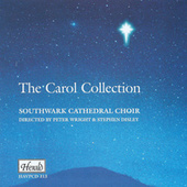 The Carol Collection by Stephen Disley