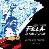 Opposite People (with Femi Kuti) (with Femi Kuti) by Leeroy