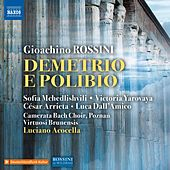 Rossini: Demetrio e Polibio (Live) by Various Artists