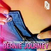 Are You Thinking What I'm Thinking? by Bernie Journey
