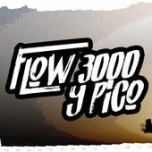 Flow 3000 Y Pico de Al2 El Aldeano