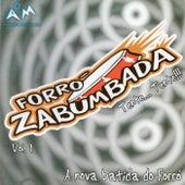A Nova Batida do Forró, Vol. 1 by Forró Zabumbada