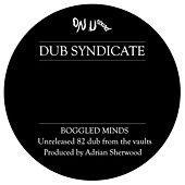 Boggled Minds by Dub Syndicate