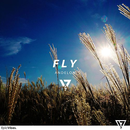 Fly by Andelon