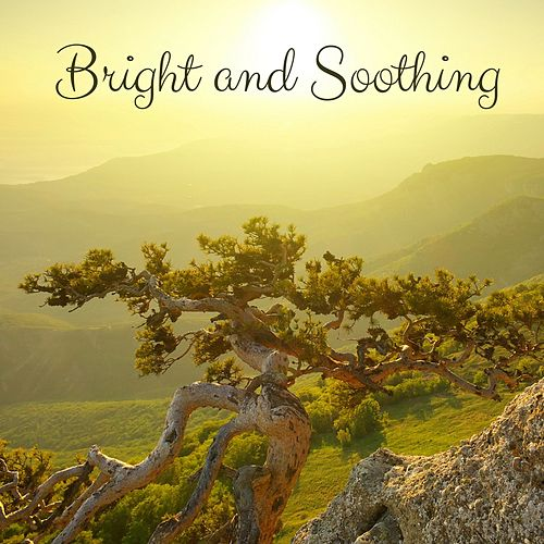 Bright and Soothing by Meditation Music Zone