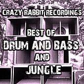 Best of DnB and Jungle 2017 by Various Artists
