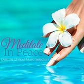Meditate in Peace: Delicate Chillout Music Selection by Various Artists