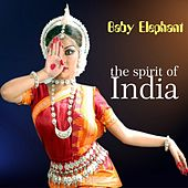 The Spirit of India by Baby Elephant