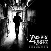 I'm Dangerous by Zachary Kibbee