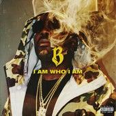 I Am Who I Am by Baka Not Nice