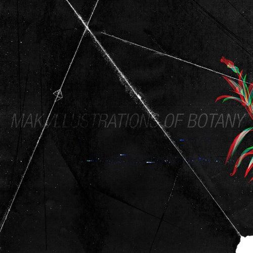 Illustrations of Botany de Maki