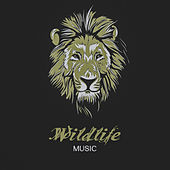 Wildlife Music – Calming Sounds of Nature, Relaxed Body & Mind, New Age 2017, Rest by Sounds of Nature Relaxation