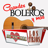 Grandes Boleros Y Mas by Various Artists