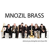 What Are You Doing The Rest Of Your Life by MNOZIL BRASS