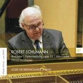 Jozef de Beenhouwer plays Robert Schumann by Jozef De Beenhouwer
