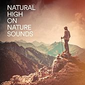 Natural High on Nature Sounds by Various Artists